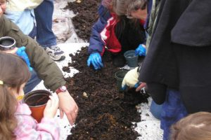 Young Naturalists digging...for worms! - E. Tenhoeve