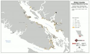 Mean relative abundance of grebe species around the Salish Sea - Bird Studies Canada