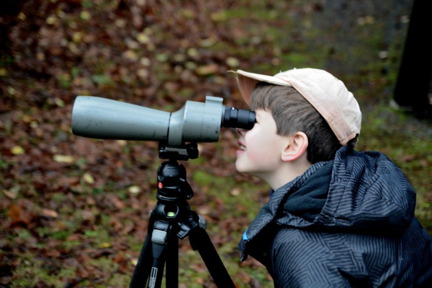 5th Christmas Bird Count for Kids