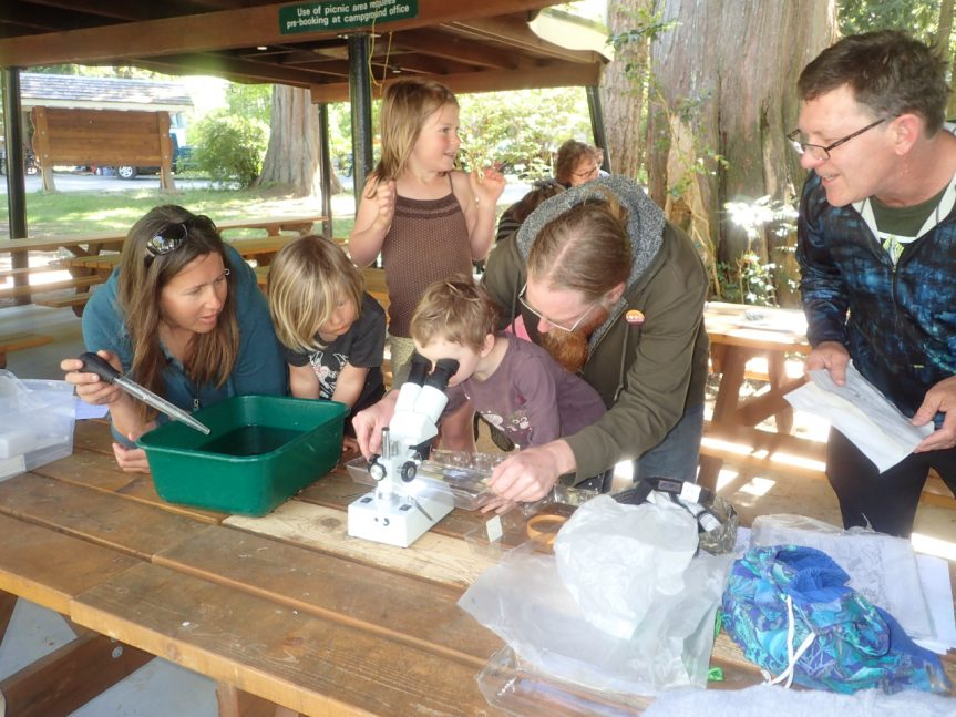 The Young Naturalists examine stream invertebrates, with a disecting microsope 18 May 2018 - J. May