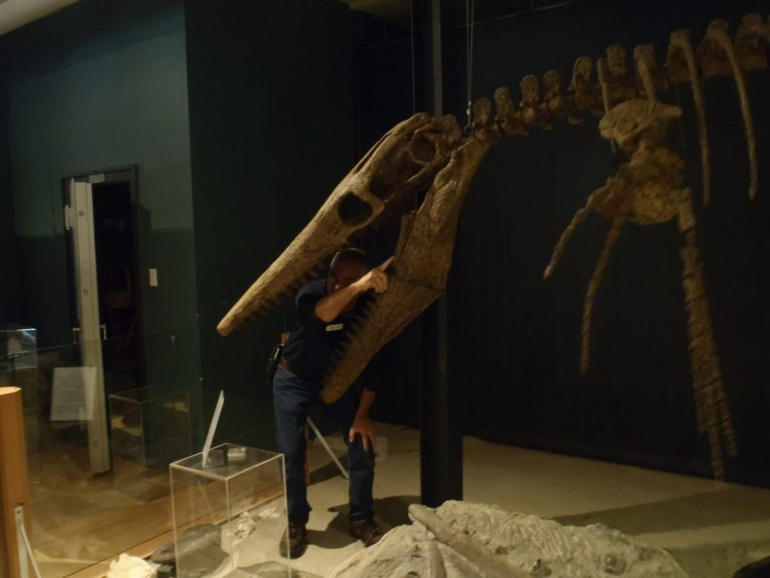 Courtenay Museum and Trent River Fossil Hunt