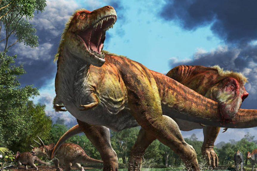 """Pat Trask – """"Dinosaurs of Vancouver Island"""""""
