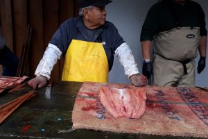 A freshly butchered Chum salmon - the traditional way! - Cindy Dalcourt
