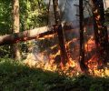 """Jeff Belcher """"B.C. Wildfires: past and future"""""""