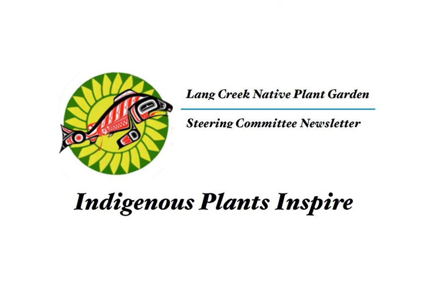 "Gail Schofield – ""indigenous plants inspire"""